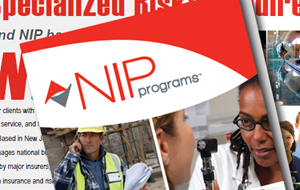 NIP Programs Overview Brochure