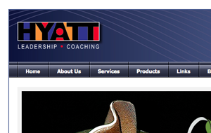 Hyatt Consulting Website